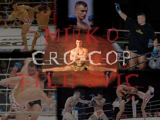 Crocop_3